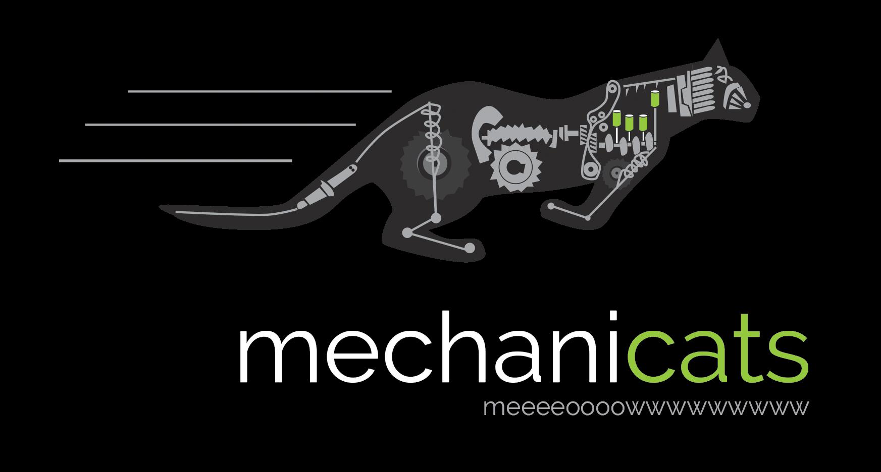 Blogul Mechanicats